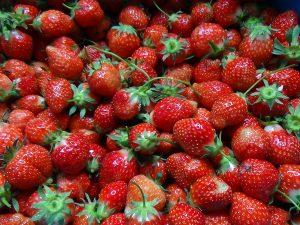 onbespoten aardbeien