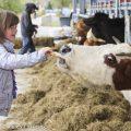 Zorgboerderij Nieuw Toutenburg bij Samen Sterk van SBS6